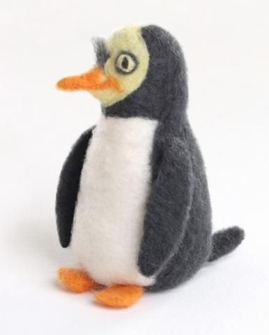Ashford Yellow-eyed Penguin